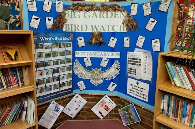 This display is for The Big Garden Bird Watch