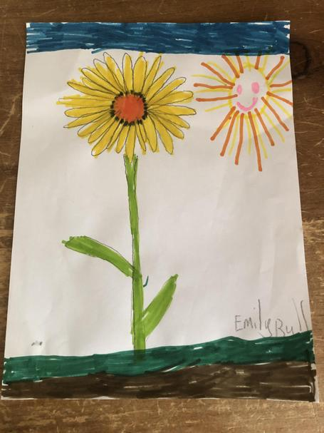 A beautiful Spring flower to spread cheer- Emily B