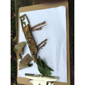 Making rainforest creatures using natural materials