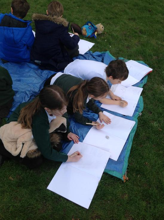Using our observational skills to sketch trees