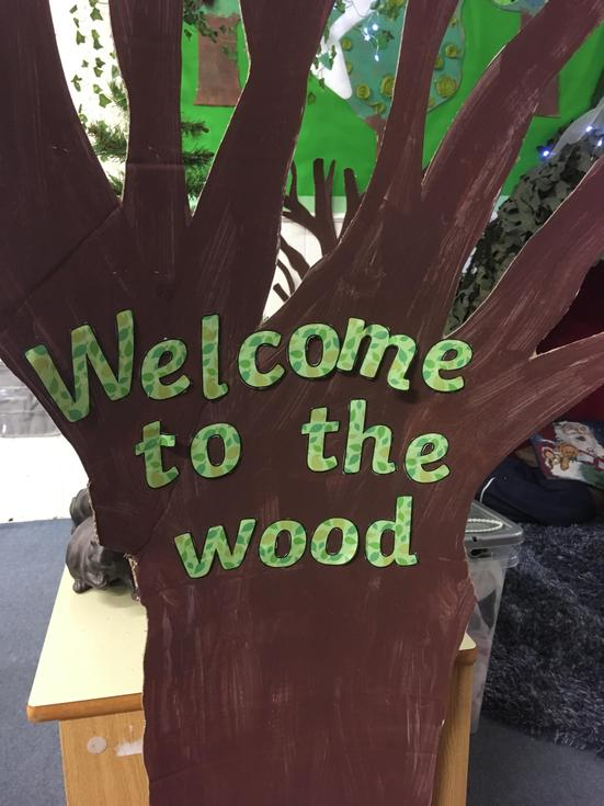 Our learning was based on woodlands.