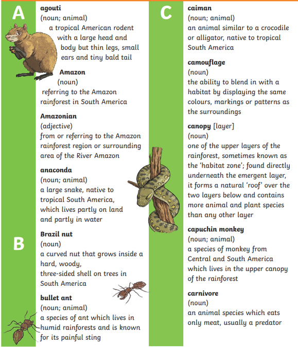 A glossary has the meanings of tricky words.