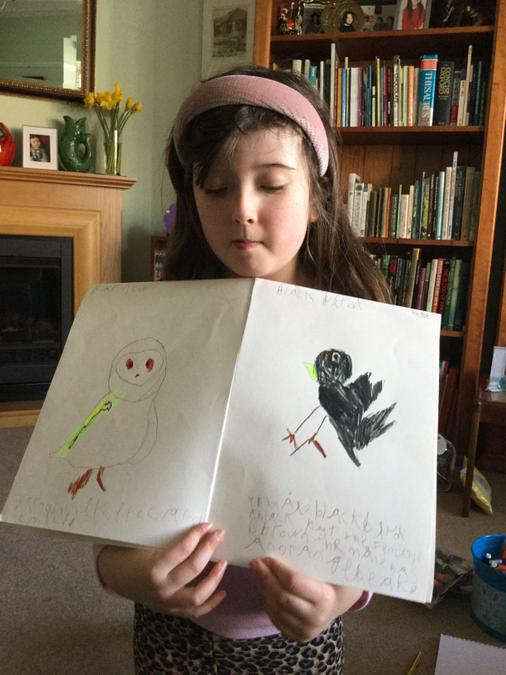 Clara has worked really hard to create a super booklet about birds!