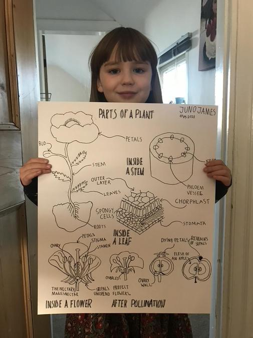 Juno's fantastic poster!