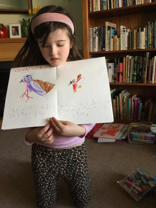 Clara's booklet has information about blackbirds, collared doves, robins and barn owls.