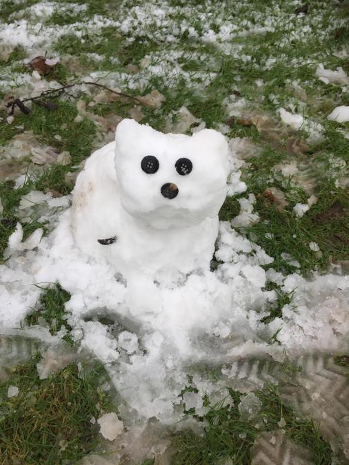 Jack's super cute snowdog!