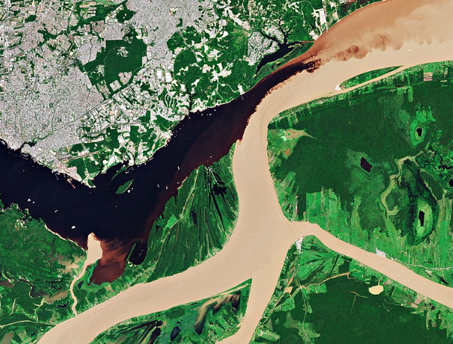 The Solimoes river is the light coloured one.