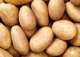 Potatoes - grown in Britain