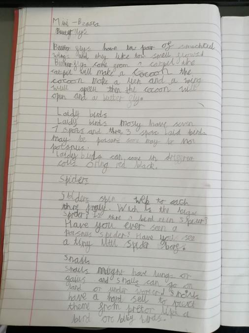 Read Irene's super writing!
