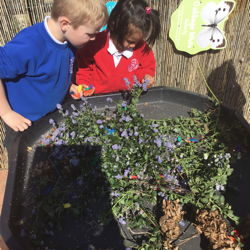 Looking for 'bugs' in the garden.