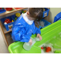 Exploring animal drinking bottles in Water.