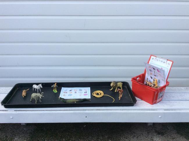 Wildlife Themed Tray for Reception