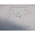 Class 3 have drawn Venn diagrams and taken surveys