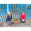 And we planted lots of beautiful flowers.