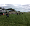 Running the final furlong