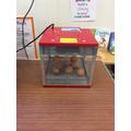 Ten hens eggs just waiting to hatch