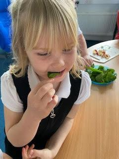 Raw spinach is my new favourite snack.
