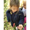 Eva found a worm.