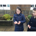 On a bug hunt in the school garden