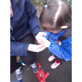 Looking closely at the worms