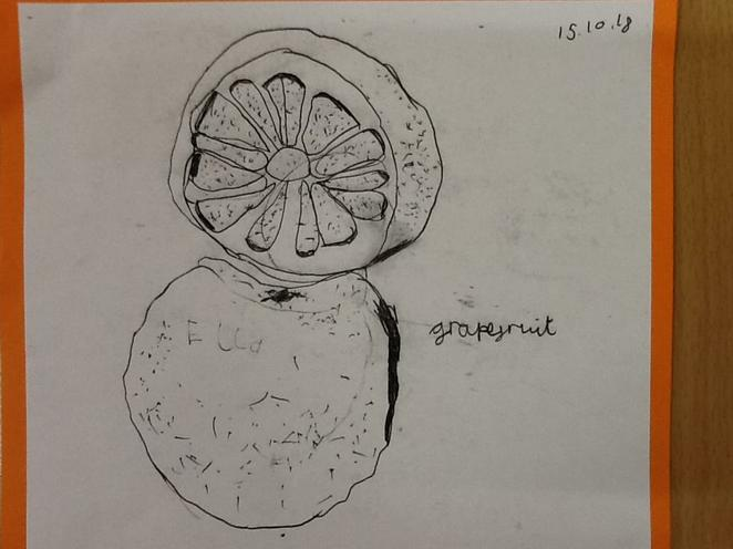 'Grapefruit' by Ella