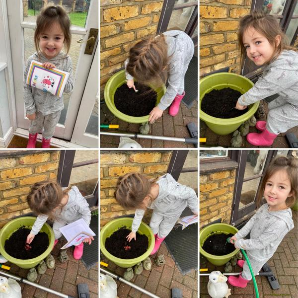 Emily planting her magic beans