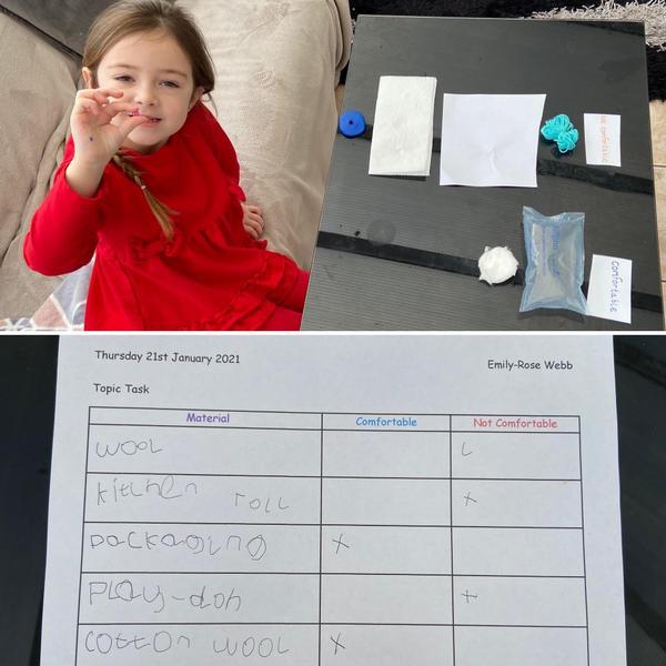 Emilys topic investigation