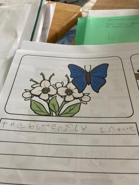 Harveys writing task
