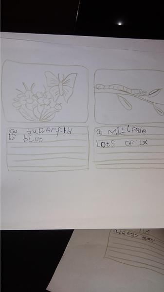 Margauxs writing task