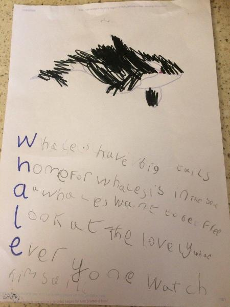 Amber B acrosticAmber B acrostic poem about whales poem about whales