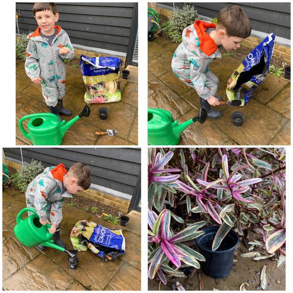 Freddies planting his magic beans