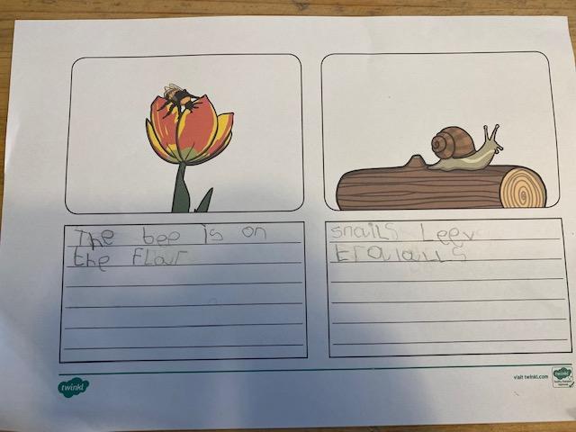 Freddies topic writing
