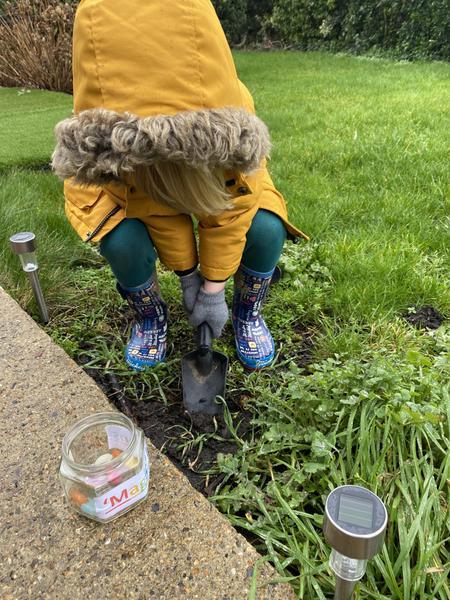 Harvey planting his magic beans