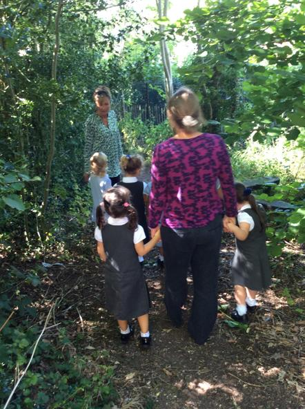 Investigating in the woodland Walk