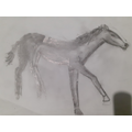 Some incredibly talented sketching from Nour!