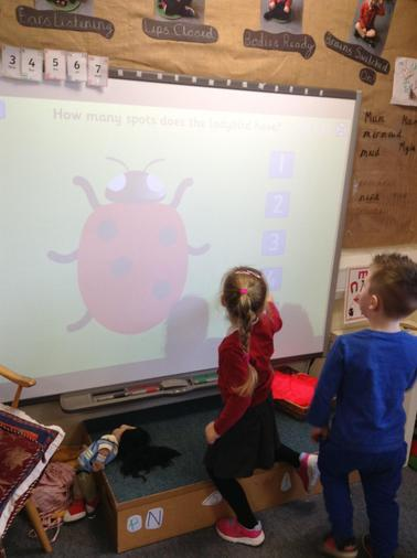 How many spots on the ladybird?
