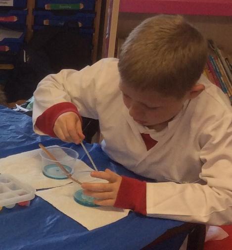 Josh working scientifically!