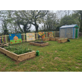 Each class has a vegetable patch planter to grow our own fruit and veg