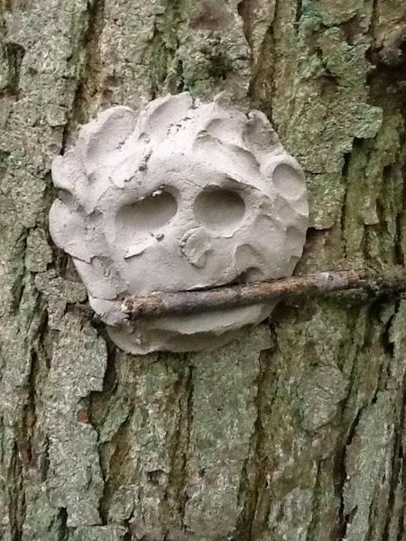 Hungry tree?
