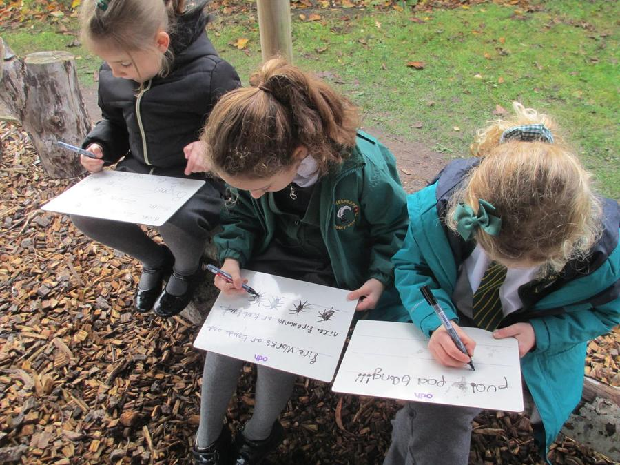 Writing describing words for our fireworks.