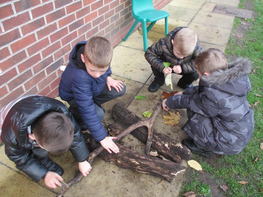 Building a bonfire