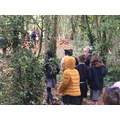 Children exploring our woodland area!