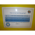 Pupil self-assessment