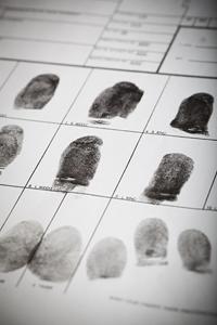 Crime Scene Investigation Workshop