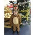 Reindeer Elijah