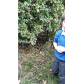 """Henry - """"He got out through the bushes!"""""""