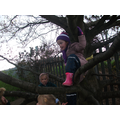 Climbing in the tree is great fun!