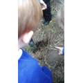 "Alfie.C- ""Look! He's dug a hole!"""