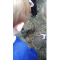 """Alfie.C- """"Look! He's dug a hole!"""""""