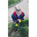 Emily enjoyed smelling the daffodils!